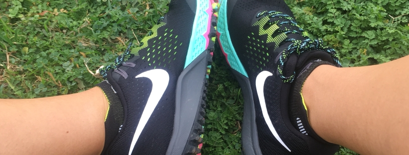 4393eba4625 TEST Trail  Les Nike Terra Kiger – Run and Write by  lily.running
